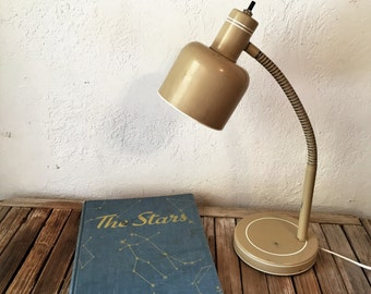 Industrial Gooseneck Desk Lamp