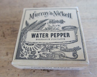 Vintage Advertising, Apothecary Drugstore Water Pepper Packet by Murray & Nickell, Unopened
