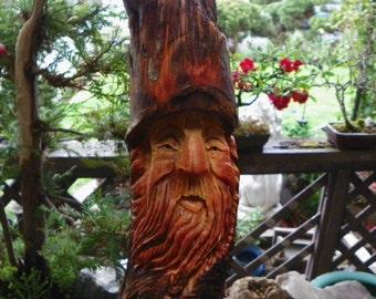 Dozer,   the pine knot wood spirit