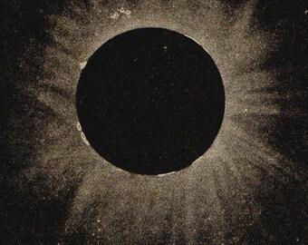 1900 Total Sun Eclipse, Original Vintage Space Astronomy Print