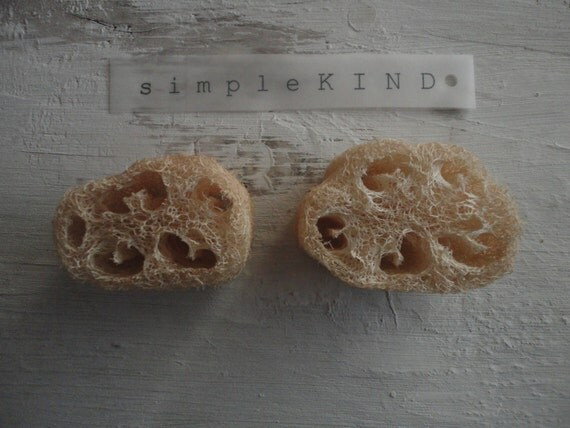 luffa sponge for natural cleaning, organic and vegan