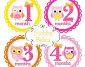 Ready to Ship Girl Month Stickers Baby Month Stickers Yellow Pink Owls Nursery Gift Owls Baby Shower Gift Baby Girl Tshirt Stickers