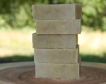 Rosemary Mint Herbal Shampoo Bar, Handmade All Natural Cold Process Solid Shampoo, Oily Hair or Scalp Dermatitis