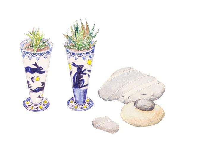 LIMITED EDITION Still Life with Bunny Ceramic Bowls, Zebra Cacti, Irish Killiney Beach Stones, Zen Still Life, Ireland Nature, Zen Art Print