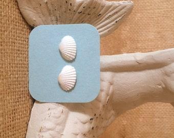 Natural Shell Earrings, Mermaid Earrings, Wedding/Bridemaids Jewelry, Mermaid Earrings, Flower Girl Earrings, Party Favor