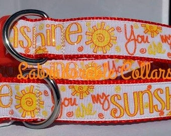 Dog Collar You Are My Sunshine Dog Collars