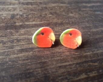 Lovebird earrings bird parrot pet jewelry animal