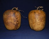 Craft Ready Set of Two Dried Apple Gourds