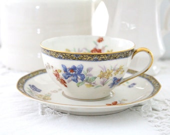 Antique French Limoges Theodore Haviland France Sanga Pattern Porcelain Tea Cup and Saucer, Replacement China  - c. 1904 - 1936