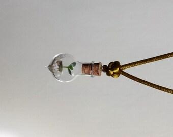 Living Plant Necklace*~ baby Kalanchoe teardrop flask
