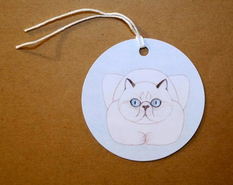 Funny White Cat Cards: Set of Six Fat White Cat GIFT TAGS