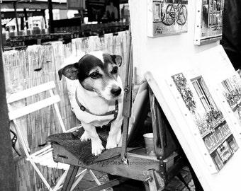 Paris France Fine Art Photography Dogs of Paris Home Decor Black and White Terrier