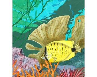 Yellow Fish Limited Edition Print