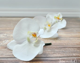 Orchid Boutonniere - White Orchid Boutonniere, Boutonniere, Silk Boutonniere, Bout, Button Hole, Orchid, Wedding, Tropical, Beach Wedding