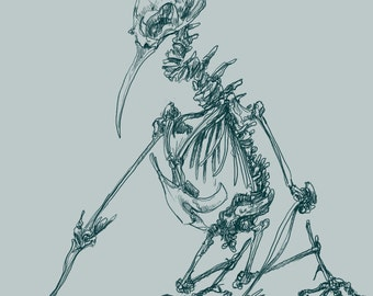 Skeleton - Print of my original illustration