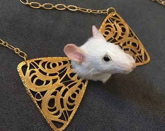Taxidermy Peeking Mouse Necklace