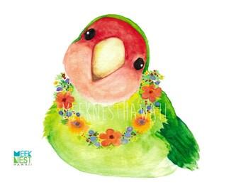 Sweety, Love Bird, hawaii, bird, animal, art print