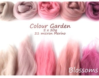 Pink Merino Shade sets - 21 micron Merino wool - 100g - 3.5oz - 5 x 20g - Colour Garden - BLOSSOMS