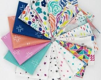 Brush Strokes Fat Quarter Bundle - Holly DeGroot for Cloud 9 Fabrics - 16 Fat Quarters