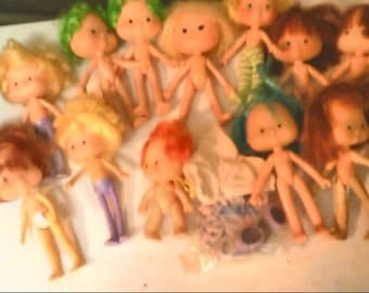 13 Strawberry shortcake dolls and a outfit and a hat
