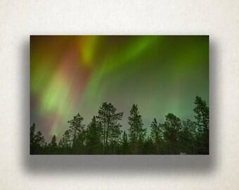Alaskan Aurora Borealis Canvas Art, Northern Lights Wall Art, Alaskan Scene  Canvas Print, Part 40