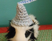 Guinea Pig Candy Kiss Hat, Valentine Hat for Guinea Pig, Piggy Kisses, Guinea Pig Clothes, Little Pet Hat, Bearded Dragon Hat
