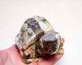Septarian Dragon Crystal Turtle over 100mm LARGE Size Brings Long Life, Good Fortune Wards off Sickness On Sale!