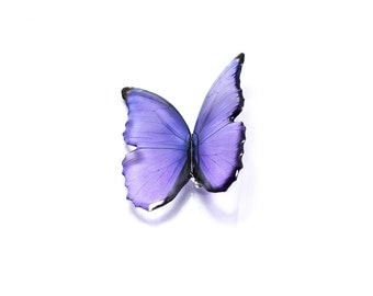 Purple Blue morpho big butterfly brooch. Looks like real butterfly. Comes in a gift box
