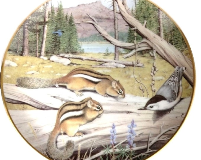 Wildlife Plate - Peter Barrett - Franklin Porcelain - Woodland Year - Friendly Chipmunks in August, Gift For Christmas, Cabin Decor