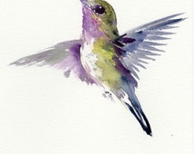 Hummingbird, 12 X 9 in, one of a kind watercolor art
