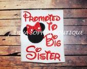 Promoted to Big Sister /  Disney Shirts