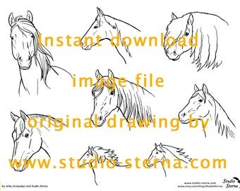 Horse Pony drawing instant download image file head1 portrait outlines pattern template stock color in children study animal pet line art