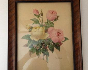 Vintage Framed Botanical Print by P J  Redoute Botanical print Yellow Pink Rose Flowers