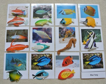 Montessori Tropical Fish 3-Part Cards with Miniatures