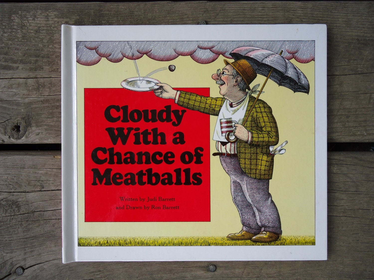 Cloudy With A Chance of Meatballs Hardback Book 1978