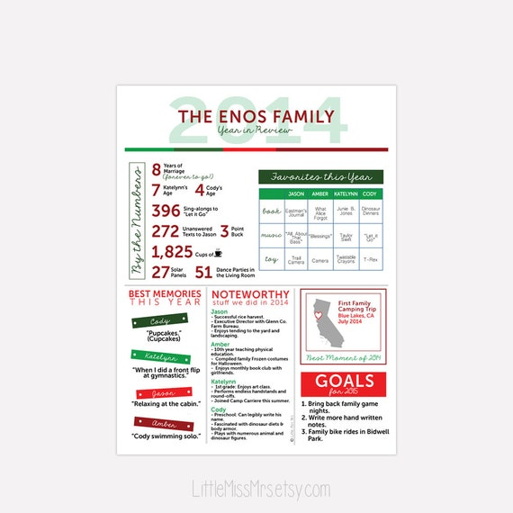 Year in Review Holiday Infographic Card - Customized, Fun, informative - include photo or custom message on back
