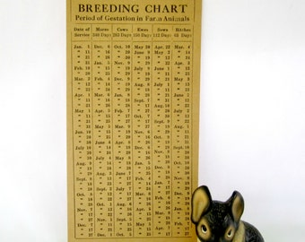 Breeding Chart Gestation In Farm Animals Paper Ephemera Vintage Charts