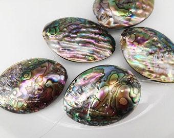 4pcs 45x31mm-50x34mm Lustrous Abalone Paua Shell Ovals Paua Shell Beads Abalone Beads