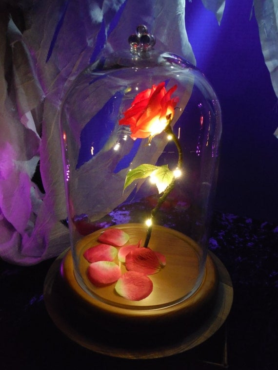 Beauty and the beast enchanted rose disney fairy tale inspired for Rose under glass