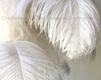 BULK 100 Piece - 10-24 inches White ostrich feather for Wedding Centerpiece decoration