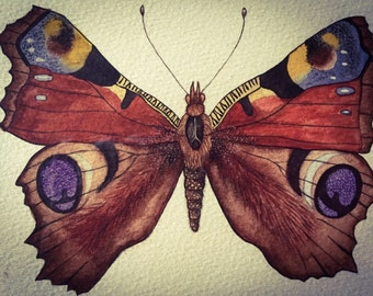 Small Butterfly Watercolor Painting
