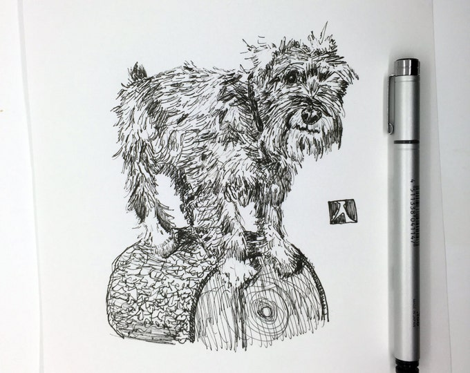 KillerBeeMoto:  Original Sketch of Standard Schnauzer Standing On A Log