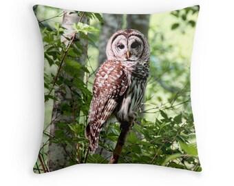 Nature Decor, Owl Pillow, Woodland Pillow, Bird Pillow,  Owl Decor, Owl Cushion, Barred Owl, Owl Throw Pillow, Wildlife Cushion, Bird Decor