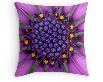 Purple Decor, Flower Pillow, Purple Pillow, Purple Cushion, Purple and Yellow, African Daisy,Daisies, Flower Cushion, Osteospermum