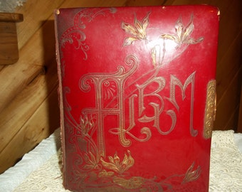 Vintage Red Celluloid Album Victorian Photo Holder Embossed Floral Motif Metal Hardware 1900's Antique Collectible