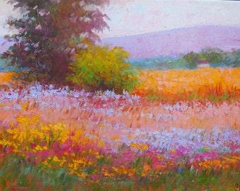 Blooming meadow in Crozet