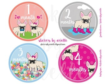 Month by Month Baby Girl Stickers - French Bulldog