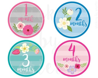 Month by Month Baby Girl Stickers - Flowers / Floral Theme