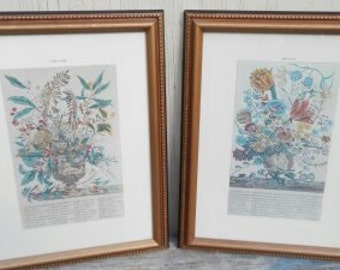January and March Botanical Framed Prints!