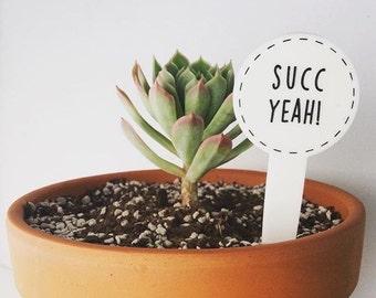 Planter Succulent Cactus garden stakes laser cut acrylic